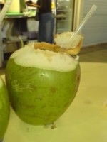 Fresh Young Drinking Coconut